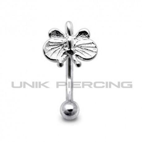 Piercing arcade  papillon argent 925